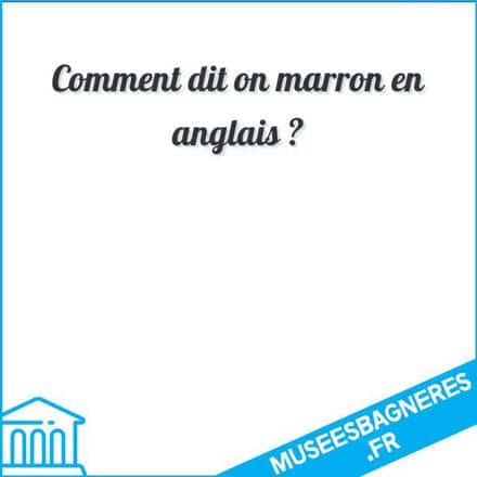 Comment dit on marron en anglais ?