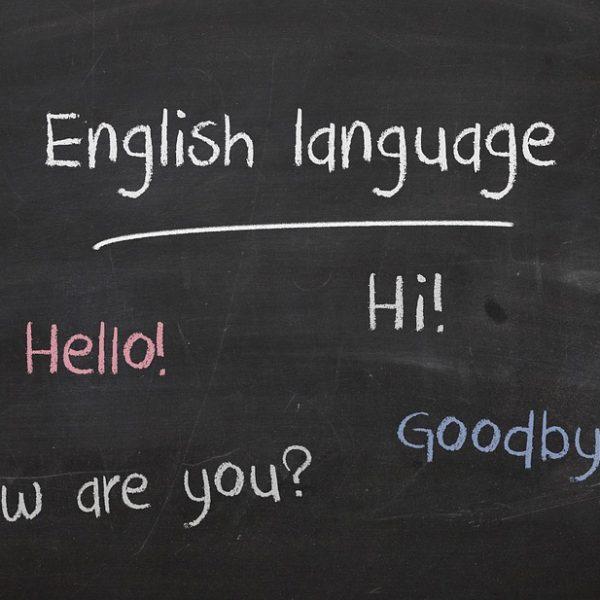 Séjour linguistique pour adulte : quel est le programme que vous allez intégrer ?